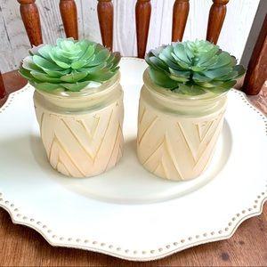 New!❤️ Pair of Succulents